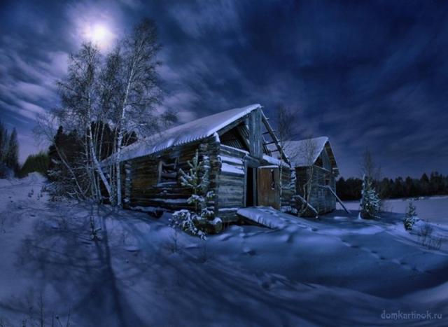 Фото дом зимой в лесу