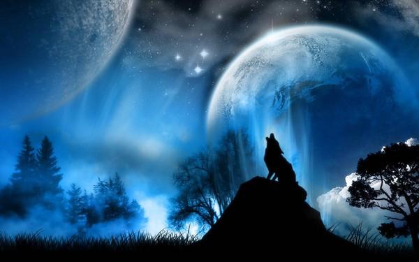 Скачать картинки на аву волков 5