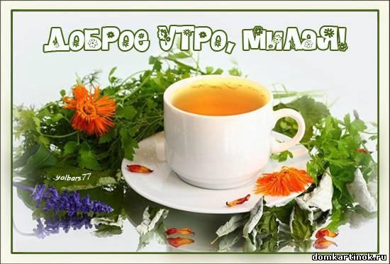 Красивые открытки пожелания доброго утра