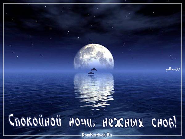 Ночь летняя картинки