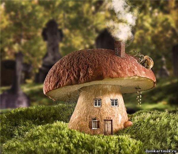 Сказочный гриб домик