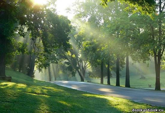 Картинка про утро весеннее утро
