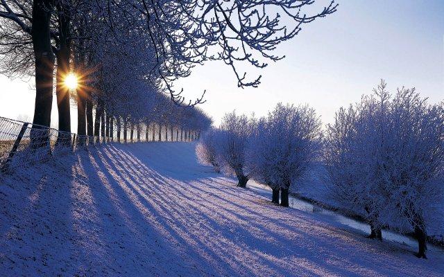 Картинка про утро зимнее утро