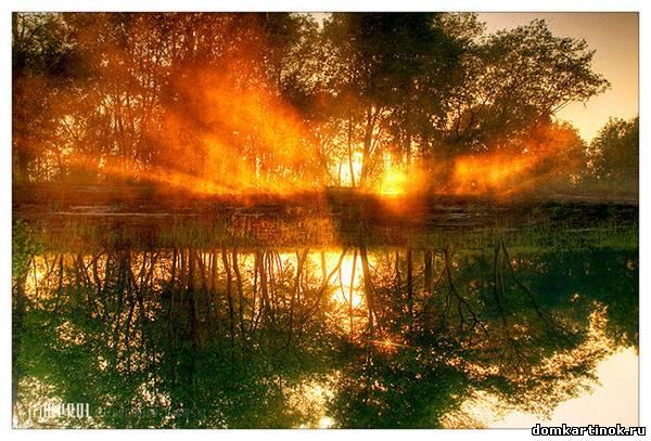 Красивое утро фото картинка про утро